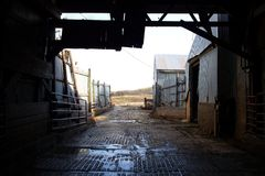 Inside Old Barn Corral Border Stock Photography
