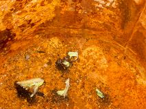 Inside of an old rusty orange metal bucket texture dirty stock photography