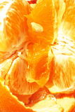 Inside of Orange. Orange split open. Multiple pieces and seeds Royalty Free Stock Photo
