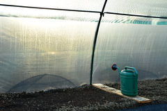 Inside the greenhouse Stock Photo