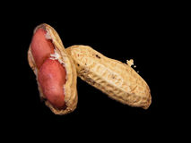 Inside peanut. An opened peanut Royalty Free Stock Images