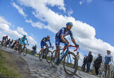Inside the Peloton - Paris Roubaix 2016 royalty free stock photography