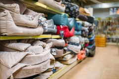 Inside pet shop, shelves with accessories, nobody. Inside pet shop, shelves with accessories, store for domestic animals, nobody. Petshop variety, no people royalty free stock image