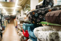 Inside pet shop, shelves with accessories, nobody. Inside pet shop, shelves with accessories, store for domestic animals, nobody. Petshop variety stock images