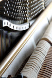 Inside piano Stock Photography