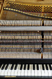 Inside the piano: string, pins, keys Royalty Free Stock Image