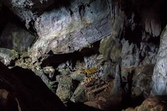 Inside the Pukham or Poukham cave in Vang Vieng, Laos stock image