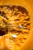 Inside of a pumpkin Royalty Free Stock Photo