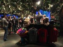 Inside Rain Forest Cafe` Orlando Royalty Free Stock Photos