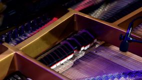 Inside the ribs of a grand. A small microphone pics up the melodic notes of a grand piano. The piano is lit by theatrical lighting on a stage. Music played is stock video footage