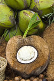 Inside a ripe coconut. Heart coconut inside a ripe coconut Royalty Free Stock Photo