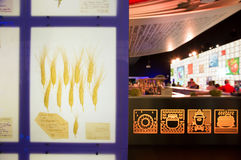Inside russian pavilion in Expo 2015, Milan Royalty Free Stock Photos