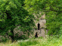 Inside of the Saschiz Fortress in Transylvania near the Saxon Vi stock photography