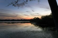 Inside Secret Lake park at sunset in Casselberry Florida. Inside Secret Lake Park at sunset located on Triplet lake drive,  Casselberry Florida Stock Photography