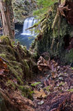 Inside tree stump looking at waterfall below. Inside tree stump overlooking forest below with cascading waterfall and azure blue water royalty free stock photography