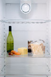 Inside the unhealthy person's fridge Royalty Free Stock Image