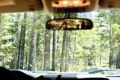 Inside a vehicle driving through a forest stock image