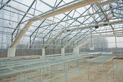 Inside view empty greenhouse Royalty Free Stock Photography