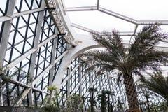 Inside view of Greenhouse of Seoul botanic park, seoul, south korea stock photo
