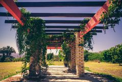 A inside view from a pergola in a field royalty free stock photos