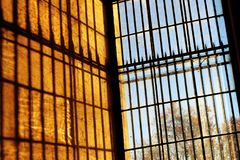 Iron prison bars sunrise and trees. From inside, the windows have bars that a jail would be proud of. Internment. Detention. Enclosing. Imprisonment stock image
