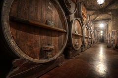 Inside a Wine Cellar Royalty Free Stock Images