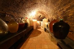 Inside wine cellar Royalty Free Stock Photos