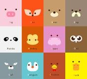 Insieme animale del fronte Fotografia Stock