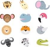 Insieme animale del fumetto di safari selvaggio sveglio Immagini Stock