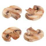 Insieme arrostito del fungo Fotografia Stock Libera da Diritti