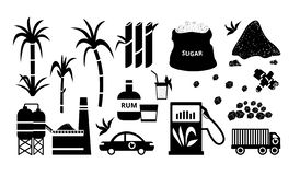 Insieme in bianco e nero dell'icona della canna da zucchero royalty illustrazione gratis