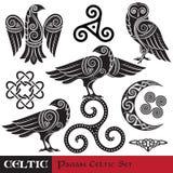 Insieme celtico di magia Luna cornuta celtica, gufo celtico, celtico Raven illustrazione di stock