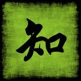 Insieme cinese di calligrafia di conoscenza Fotografia Stock Libera da Diritti