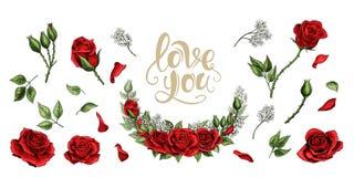 Insieme colorato degli elementi disegnati a mano dell'illustrazione delle rose rosse illustrazione vettoriale