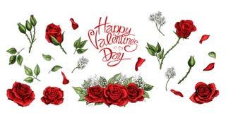 Insieme colorato degli elementi disegnati a mano dell'illustrazione delle rose rosse illustrazione di stock