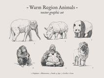 Insieme d'annata dell'illustrazione degli animali caldi di regione Fotografie Stock Libere da Diritti