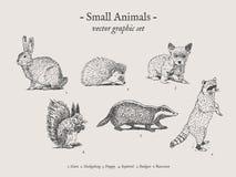 Insieme d'annata dell'illustrazione dei piccoli animali Immagini Stock Libere da Diritti