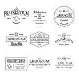 Insieme d'annata e retro del logos e di etichette di stile Immagini Stock Libere da Diritti