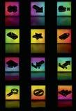 Insieme d'ardore dell'icona della maglia di gradiente Fotografie Stock Libere da Diritti
