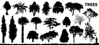 Insieme degli alberi Fotografia Stock