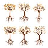 Insieme degli alberi con le radici Illustrazione di vettore Immagine Stock Libera da Diritti
