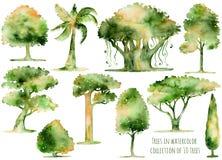 Insieme degli alberi disegnati a mano dell'acquerello Fotografie Stock Libere da Diritti