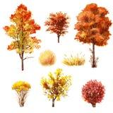Insieme degli alberi e dei cespugli di autunno Immagini Stock