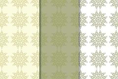 Insieme degli ambiti di provenienza floreali pallidi di verde verde oliva Reticoli senza giunte Immagini Stock Libere da Diritti