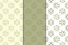 Insieme degli ambiti di provenienza floreali di verde verde oliva Reticoli senza giunte Fotografia Stock