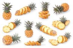 Insieme degli ananas del bambino su bianco Immagini Stock