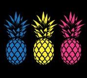 Insieme degli ananas di colore Fotografie Stock Libere da Diritti