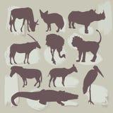 Insieme degli animali africani Siluetta Vettore Immagini Stock