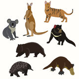 Insieme degli animali australiani Fotografia Stock