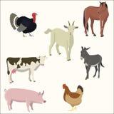 Insieme degli animali da allevamento Fotografia Stock